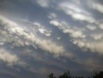 干草原天空在春天 库存照片