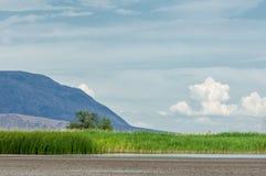 干草原的河 大草原 库存图片