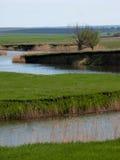 干草原的河 库存图片