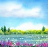 干草原系列水彩风景用不同的季节 图库摄影