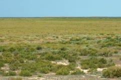 干草原 无树木,恶劣的湿气和通常平的区域与gra 图库摄影