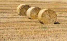 干草和农业农场 免版税图库摄影