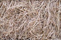 干草和秸杆大包 免版税图库摄影
