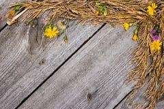 干草和花秋天框架  库存图片