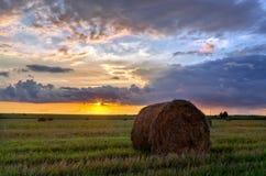 干草堆劳斯领域的在收割期 免版税库存图片
