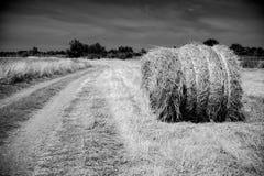 干草堆劳斯领域的 夏天与干草堆的农厂风景 库存照片