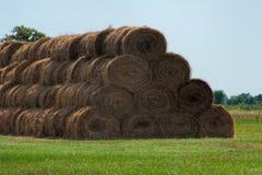 干草堆劳斯领域的 夏天与干草堆的农厂风景 免版税库存图片