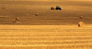 干草堆发茬 免版税库存图片