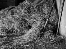 干草堆和干草叉 免版税图库摄影