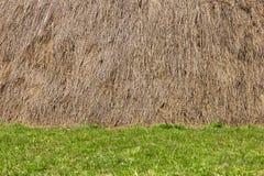 干草堆和草背景 库存图片
