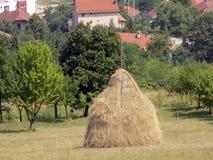 干草堆在村庄 库存照片