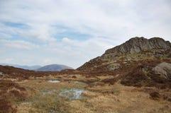 干草堆小湖 库存照片