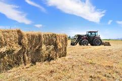 干草堆拖拉机 库存照片
