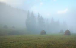 干草堆有薄雾的早晨 库存图片