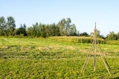 干草堆的框架 免版税库存图片