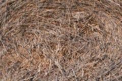 干草堆背景 免版税库存图片