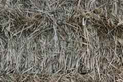 干草堆2 库存图片