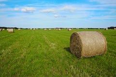 干草堆- Monkash,威尔士 库存图片