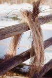 干草干燥 库存图片