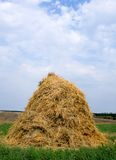 干草干草堆秸杆 免版税库存照片