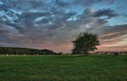 干草捆和偏僻的树在一个草甸反对美丽的天空与云彩在日落 库存图片