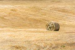 干草捆在一个多小山和农村区域的谷单一地在 库存照片