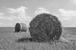 干草捆在乡下 免版税库存照片