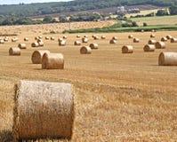 干草捆在农村肯特 免版税库存照片