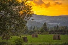 干草捆在日落的,古比奥,翁布里亚,意大利草甸 免版税库存图片