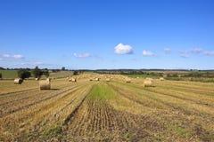 干草捆在秋天 库存图片