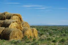 干草捆在蒙大拿 免版税库存照片