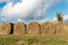 干草捆排队在美丽的天空下 免版税库存图片