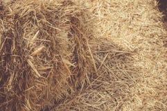 干草捆特写镜头在村庄 在农村场面的干燥干草堆 免版税库存照片