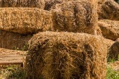 干草捆特写镜头在村庄 在农村场面的干燥干草堆 免版税图库摄影