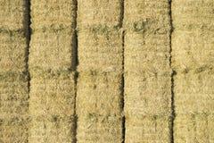 干草捆联盟在长方形干草堆 库存图片