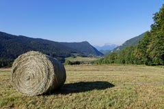 干草推车在山风景的 库存照片
