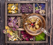 干草本和花和清凉茶 库存图片