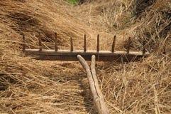 干草的木犁耙 免版税库存图片