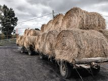 干草的运输 免版税库存照片