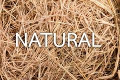 干草背景和自然词 JPG 免版税库存照片