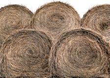 干草被堆的捆绑 库存图片