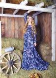 干草谷仓的美丽的白肤金发的时髦的女人 库存照片