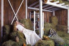 干草谷仓的美丽的白肤金发的时髦的女人 库存图片