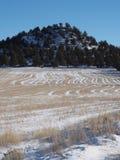干草领域和小山在冬天 免版税库存照片