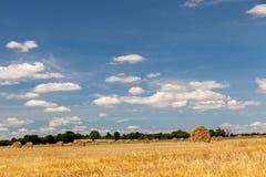 干草领域在诺曼底 免版税库存照片