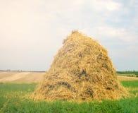 干草领域 库存照片