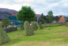 干草,一个干草堆在庭院里 免版税库存图片