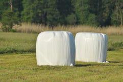 干草说谎在草甸的大包在割晒牧草期间 河谷,草甸 免版税库存图片