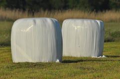 干草说谎在草甸的大包在割晒牧草期间 河谷 免版税库存照片