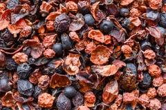 干莓果紧密背景 图库摄影